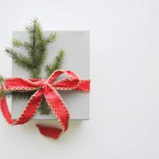 Christmas gift for swimmer